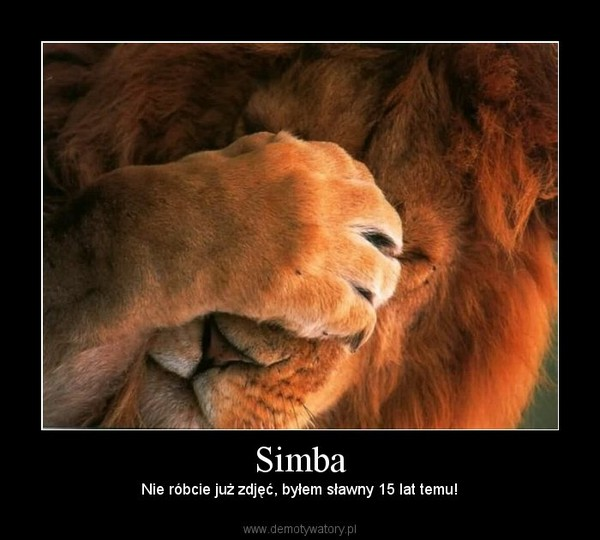 Simba – Nie róbcie już zdjęć, byłem sławny 15 lat temu!
