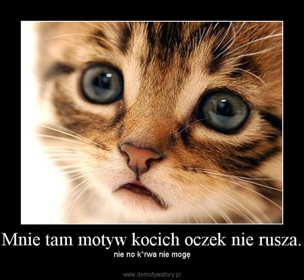 Mnie tam motyw kocich oczek nie rusza. – nie no k*rwa nie mogę