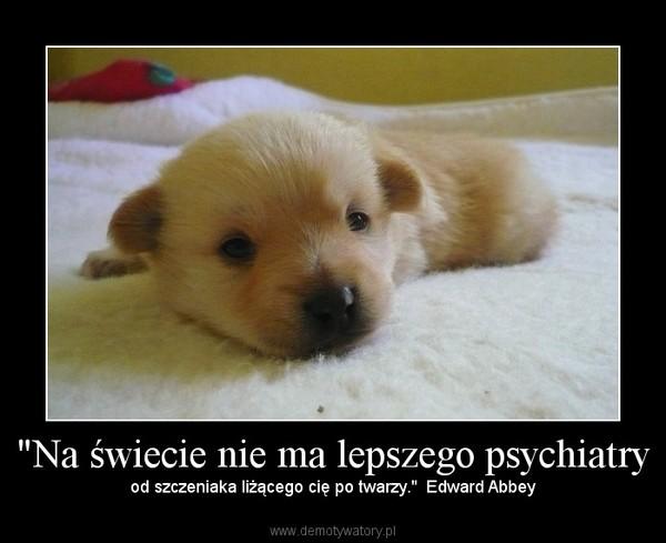 """""""Na świecie nie ma lepszego psychiatry – od szczeniaka liżącego cię po twarzy.""""  Edward Abbey"""