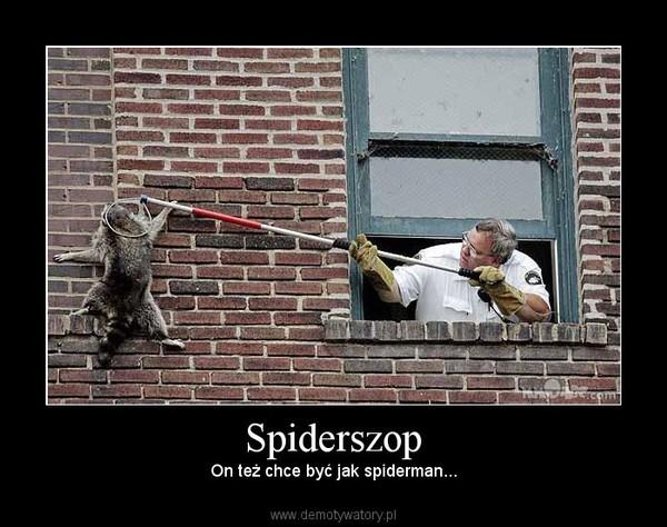 Spiderszop – On też chce być jak spiderman...