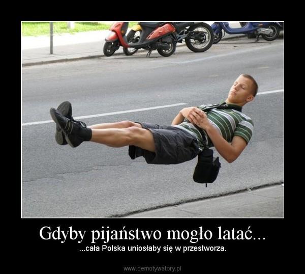 Gdyby pijaństwo mogło latać... –  ...cała Polska uniosłaby się w przestworza.