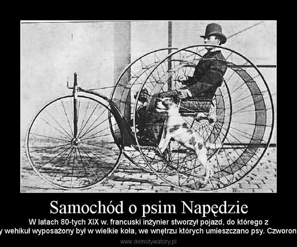 Samochód o psim Napędzie – W latach 80-tych XIX w. francuski inżynier stworzył pojazd, do którego zpewnością zastrzeżenia mieliby współcześni obrońcy praw zwierząt. Dwuosobowy wehikuł wyposażony był w wielkie koła, we wnętrzu których umieszczano psy. Czworonogi biegnąc po obręczy przypominającej kołowrotek dla chomika, rozpędzały wóz.