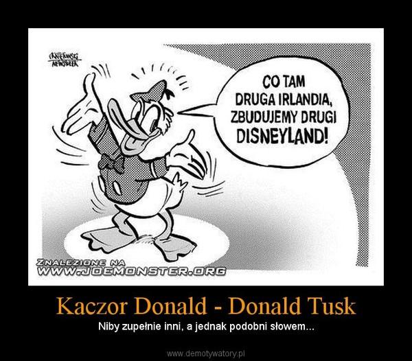 Kaczor Donald - Donald Tusk – Niby zupełnie inni, a jednak podobni słowem...