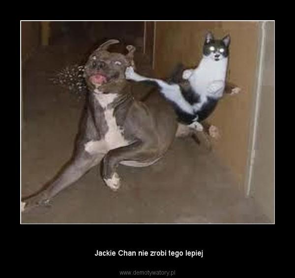 Kung Fu –  Jackie Chan nie zrobi tego lepiej