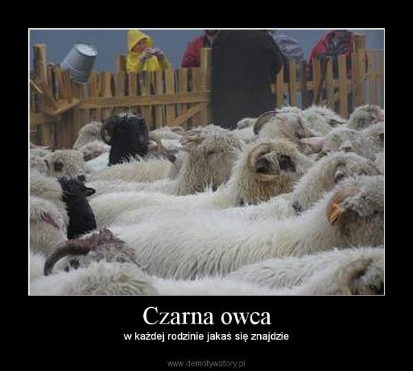 Czarna owca – w każdej rodzinie jakaś się znajdzie