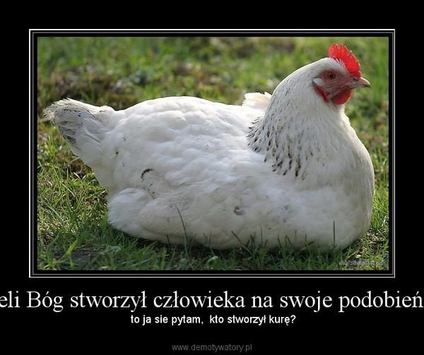 Jeżeli Bóg stworzył człowieka na swoje podobieństw – to ja sie pytam,  kto stworzył kurę?