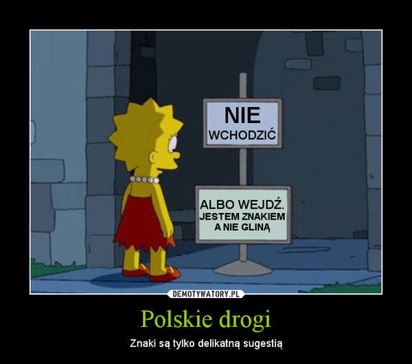 Polskie drogi – Znaki są tylko delikatną sugestią