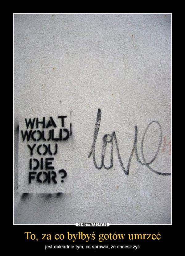 To, za co byłbyś gotów umrzeć – jest dokładnie tym, co sprawia, że chcesz żyć