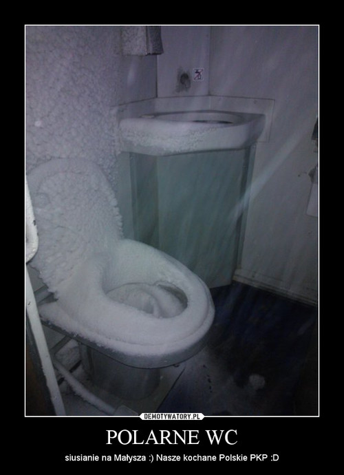 POLARNE WC