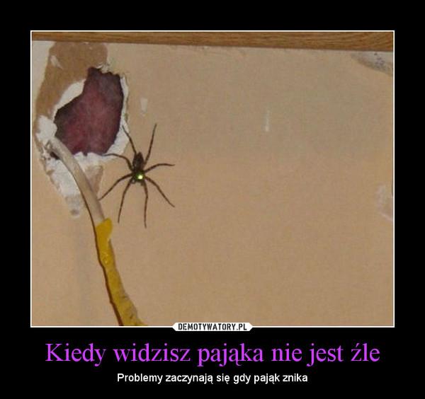 Kiedy widzisz pająka nie jest źle – Problemy zaczynają się gdy pająk znika