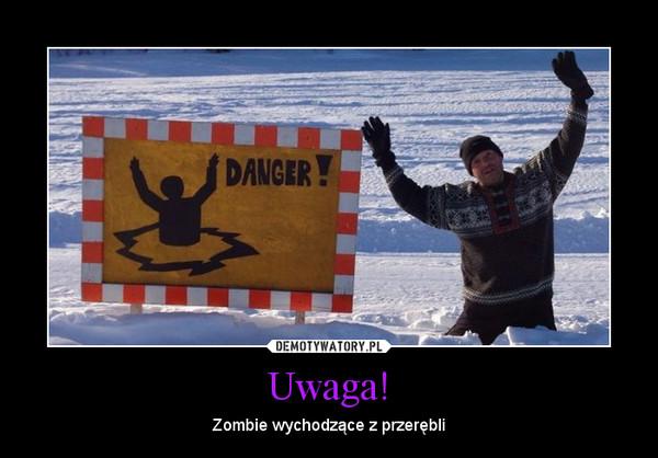 Uwaga! – Zombie wychodzące z przerębli