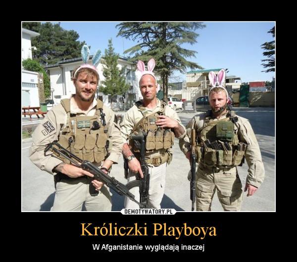 Króliczki Playboya – W Afganistanie wyglądają inaczej