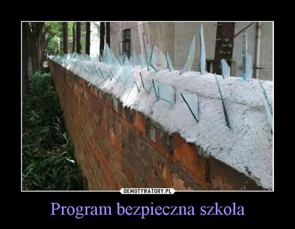 Program bezpieczna szkoła –