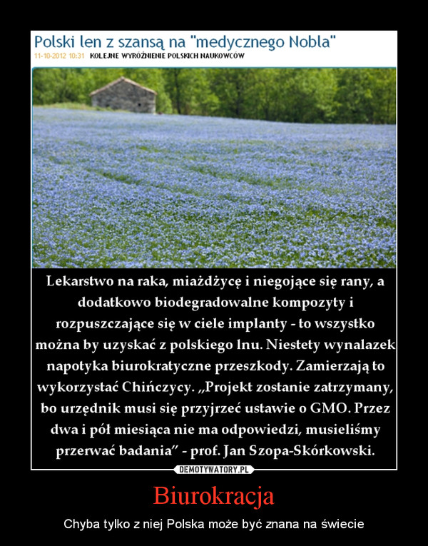 Biurokracja – Chyba tylko z niej Polska może być znana na świecie