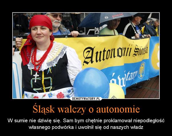 Śląsk walczy o autonomie – W sumie nie dziwię się. Sam bym chętnie proklamował niepodległość własnego podwórka i uwolnił się od naszych władz