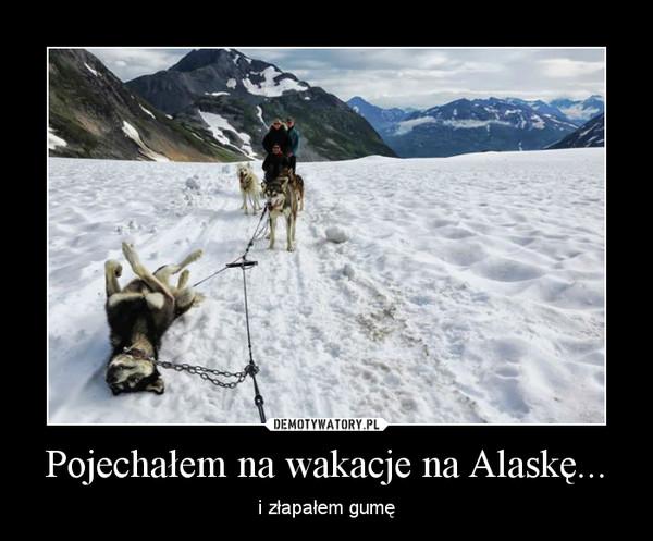 Pojechałem na wakacje na Alaskę... – i złapałem gumę