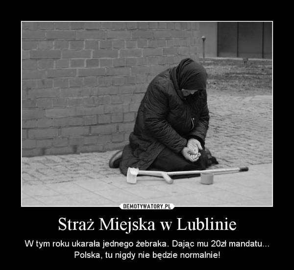 Straż Miejska w Lublinie – W tym roku ukarała jednego żebraka. Dając mu 20zł mandatu... Polska, tu nigdy nie będzie normalnie!