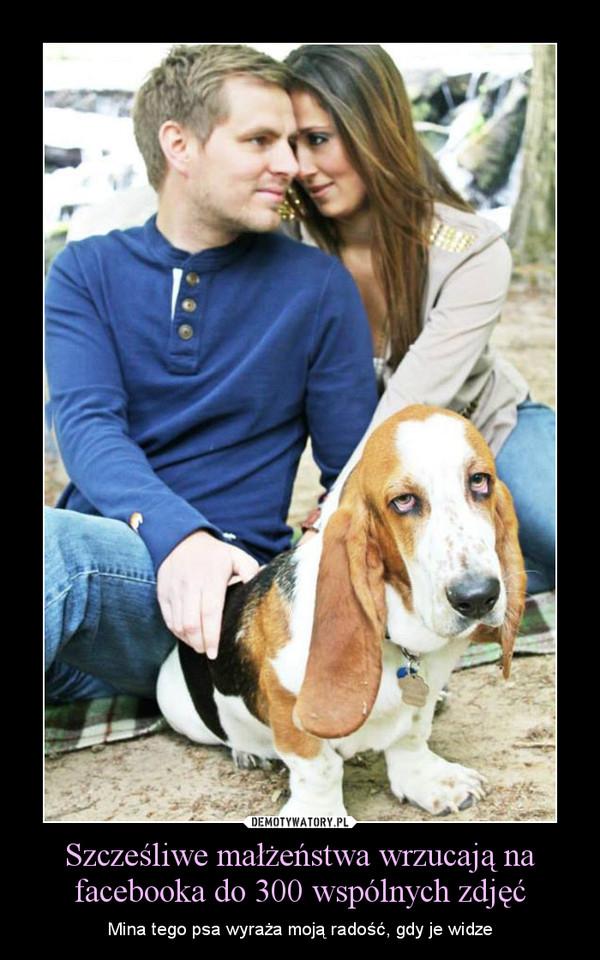 Szcześliwe małżeństwa wrzucają na facebooka do 300 wspólnych zdjęć – Mina tego psa wyraża moją radość, gdy je widze