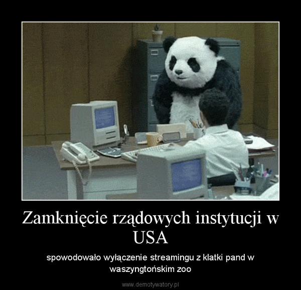 Zamknięcie rządowych instytucji w USA – spowodowało wyłączenie streamingu z klatki pand w waszyngtońskim zoo