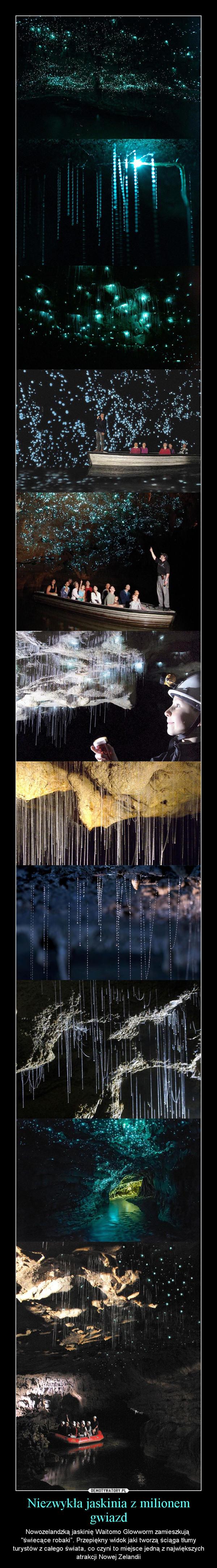 """Niezwykła jaskinia z milionem gwiazd – Nowozelandzką jaskinię Waitomo Glowworm zamieszkują """"świecące robaki"""". Przepiękny widok jaki tworzą ściąga tłumy turystów z całego świata, co czyni to miejsce jedną z największych atrakcji Nowej Zelandii"""
