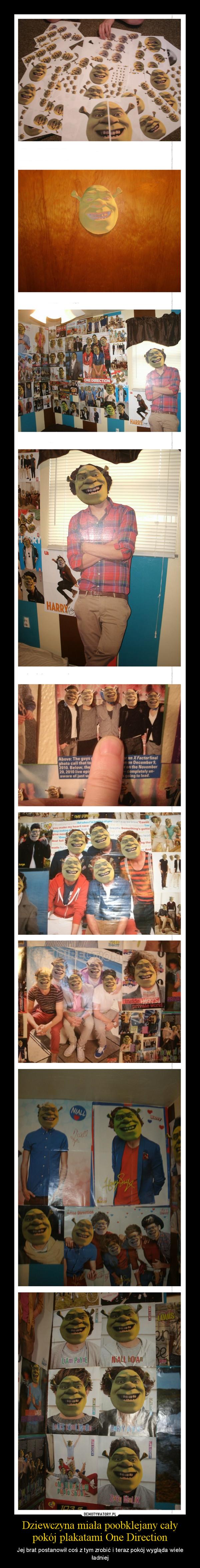Dziewczyna miała poobklejany cały pokój plakatami One Direction – Jej brat postanowił coś z tym zrobić i teraz pokój wygląda wiele ładniej