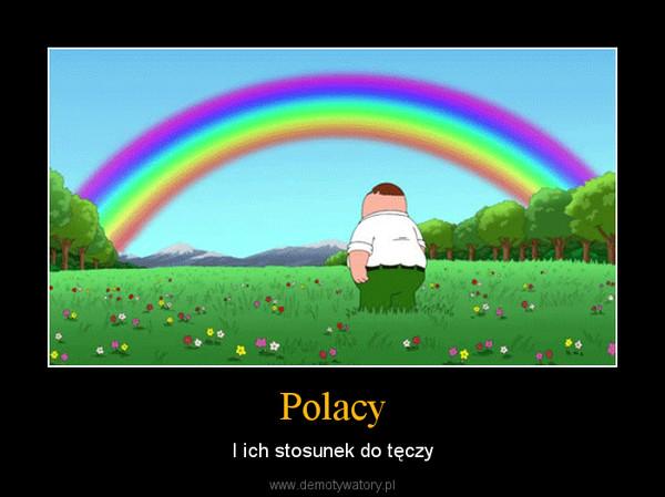 Polacy – I ich stosunek do tęczy