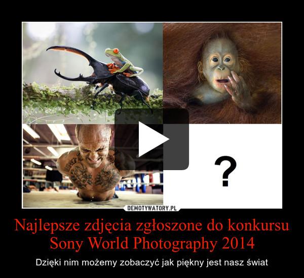 Najlepsze zdjęcia zgłoszone do konkursu Sony World Photography 2014 – Dzięki nim możemy zobaczyć jak piękny jest nasz świat