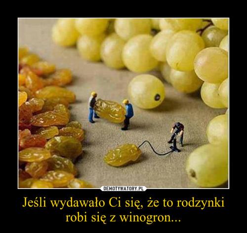 Jeśli wydawało Ci się, że to rodzynki robi się z winogron...