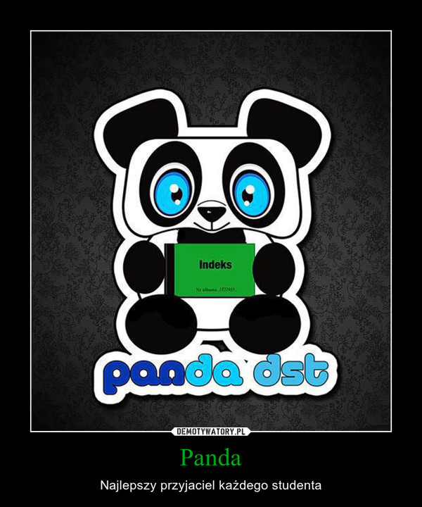 Panda – Najlepszy przyjaciel każdego studenta