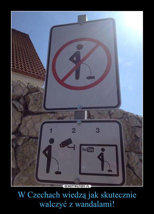 W Czechach wiedzą jak skutecznie walczyć z wandalami! –