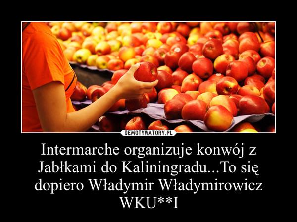 Intermarche organizuje konwój z Jabłkami do Kaliningradu...To się dopiero Władymir Władymirowicz WKU**I –