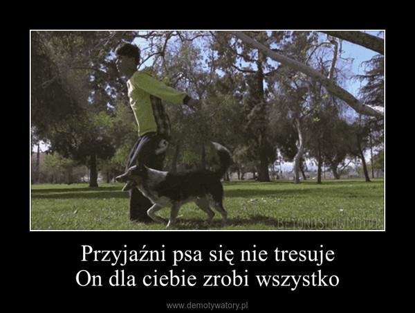 Przyjaźni psa się nie tresujeOn dla ciebie zrobi wszystko –