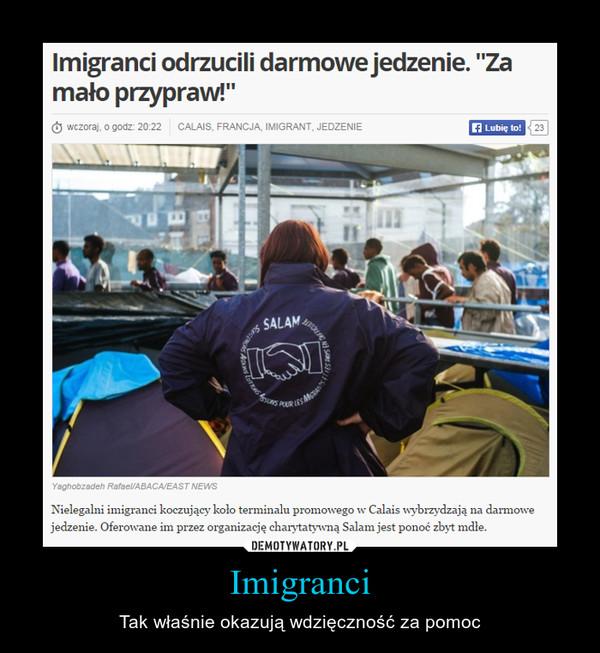 Imigranci – Tak właśnie okazują wdzięczność za pomoc