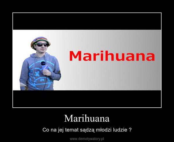 Marihuana – Co na jej temat sądzą młodzi ludzie ?