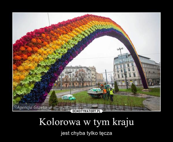 Kolorowa w tym kraju