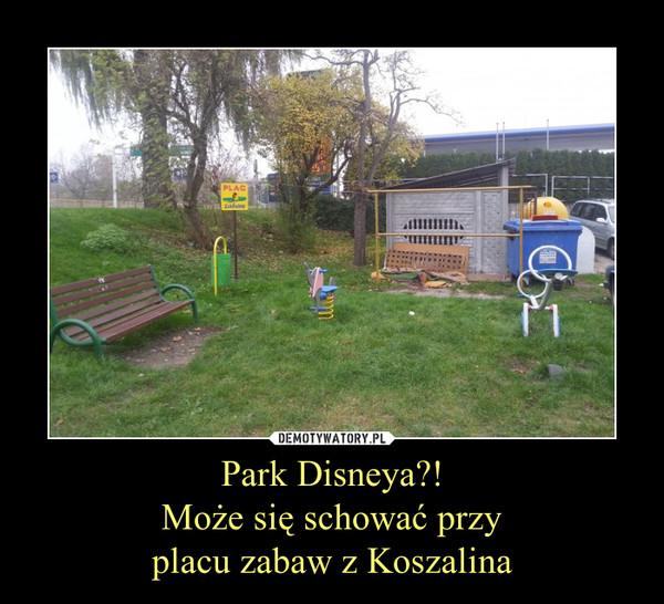 Park Disneya?!Może się schować przyplacu zabaw z Koszalina –