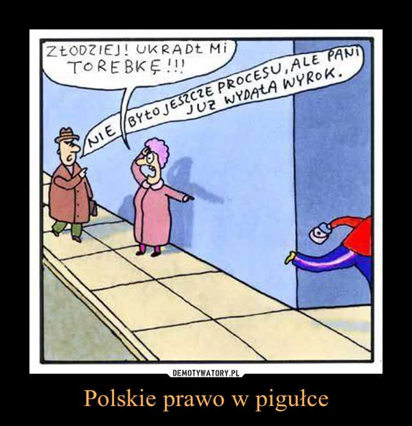 Polskie prawo w pigułce –