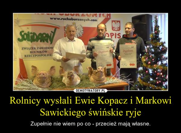 Rolnicy wysłali Ewie Kopacz i Markowi Sawickiego świńskie ryje