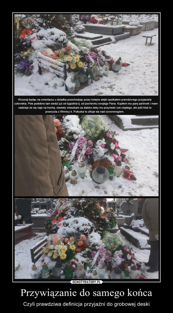 Przywiązanie do samego końca – Czyli prawdziwa definicja przyjaźni do grobowej deski