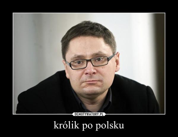 królik po polsku –