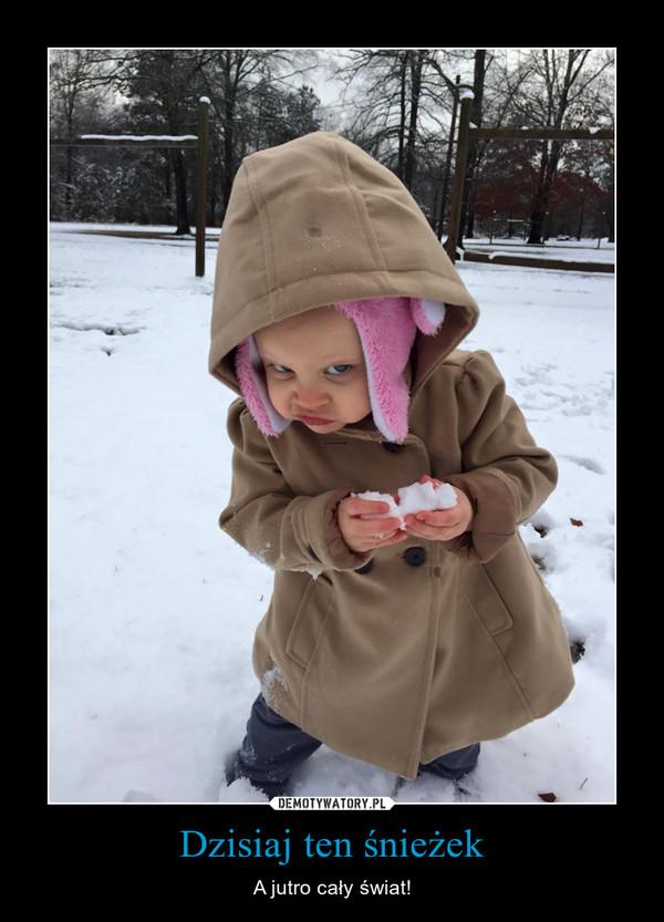 Dzisiaj ten śnieżek – A jutro cały świat!