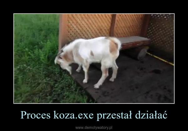 Proces koza.exe przestał działać –