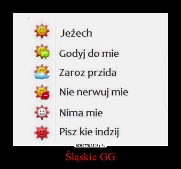 Śląskie GG –