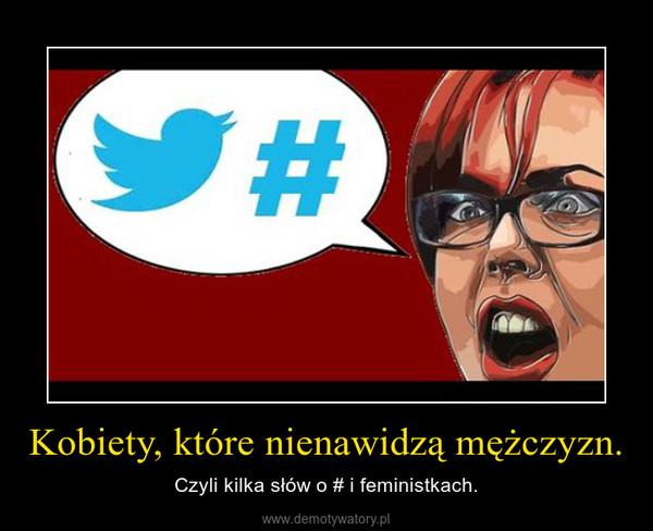 Kobiety, które nienawidzą mężczyzn. – Czyli kilka słów o # i feministkach.
