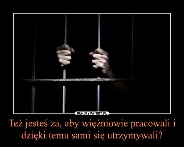 Też jesteś za, aby więźniowie pracowali i dzięki temu sami się utrzymywali? –