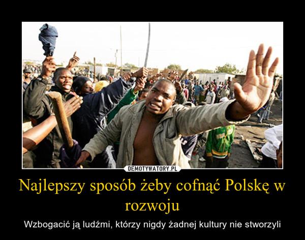 Najlepszy sposób żeby cofnąć Polskę w rozwoju – Wzbogacić ją ludźmi, którzy nigdy żadnej kultury nie stworzyli