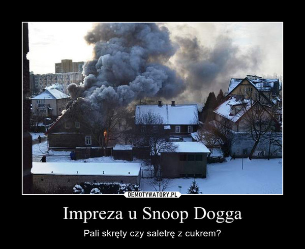 Impreza u Snoop Dogga – Pali skręty czy saletrę z cukrem?