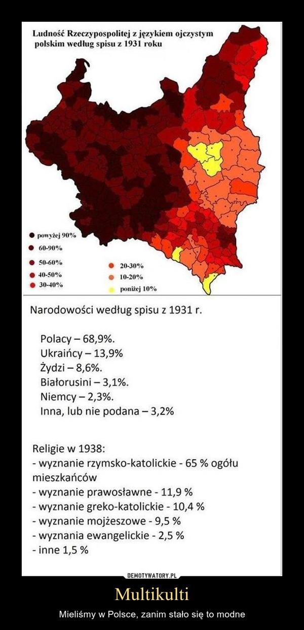 Multikulti – Mieliśmy w Polsce, zanim stało się to modne