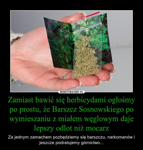 Zamiast bawić się herbicydami ogłośmy po prostu, że Barszcz Sosnowskiego po wymieszaniu z miałem węglowym daje lepszy odlot niż mocarz – Za jednym zamachem pozbędziemy się barszczu, narkomanów i jeszcze podratujemy górnictwo...
