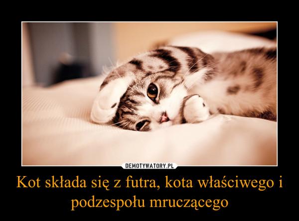 Kot składa się z futra, kota właściwego i podzespołu mruczącego –
